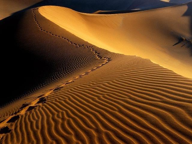 کویر ایران